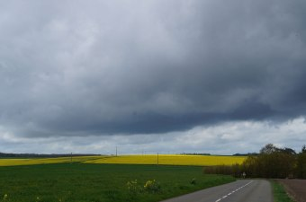 Web-storm-front-over-canola