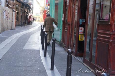 WK_Web_Dog walking in Paris